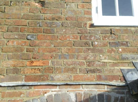 The same wall 4 weeks later