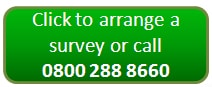 Arrange a woodworm survey from Timberwise