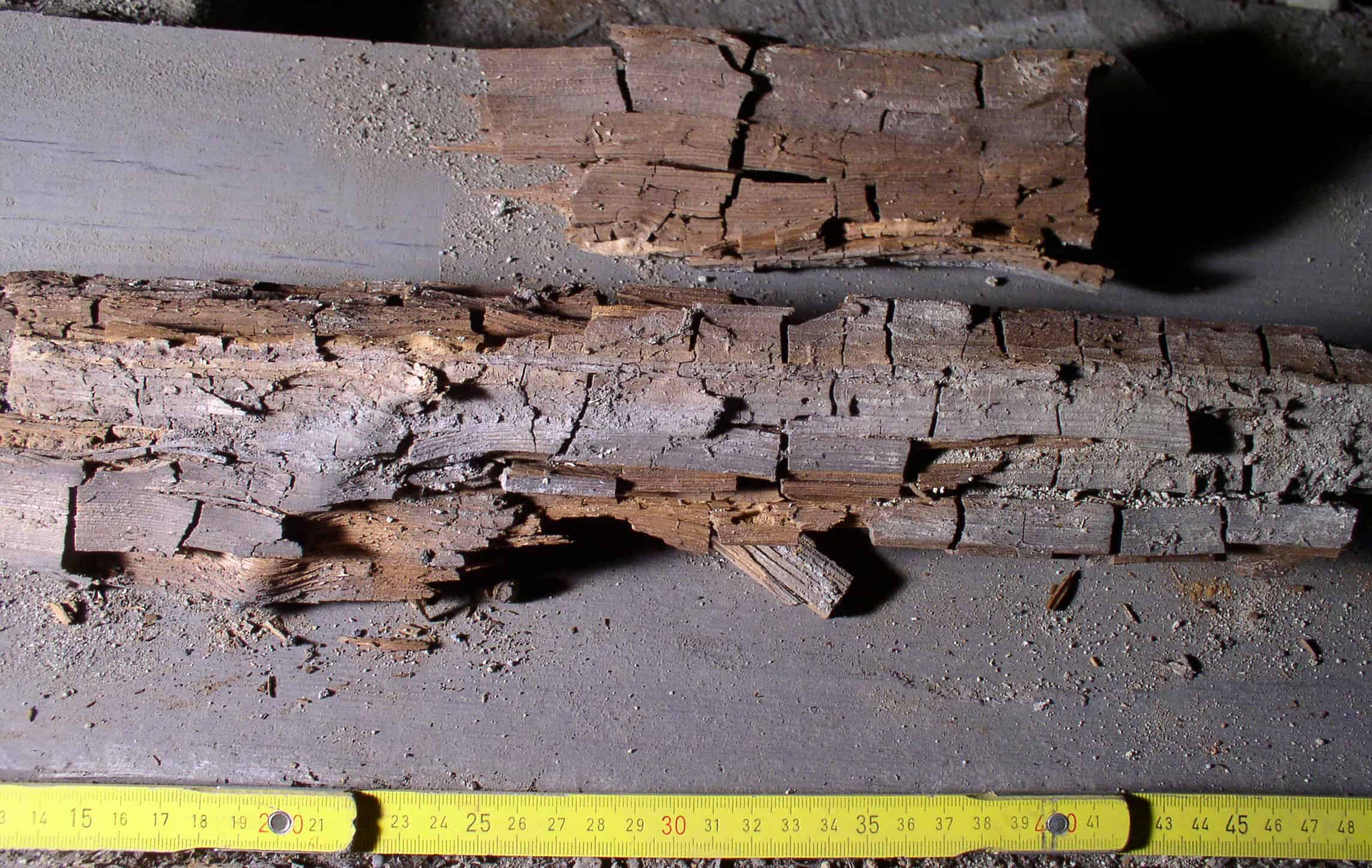 Cuboidal cracking of timber caused by dry rot