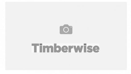 Timberwise brand with a camera