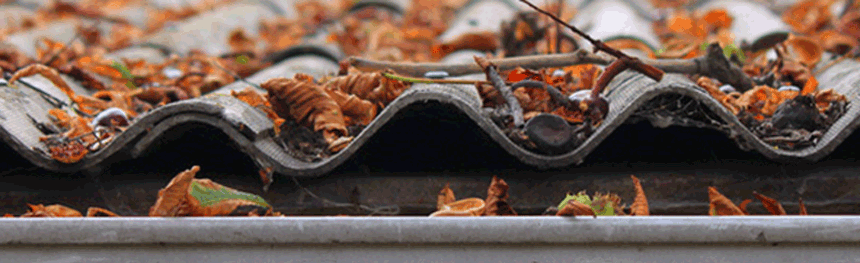 Gutter Cleaning Timberwise