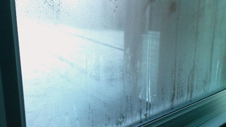 Commercial Condensation