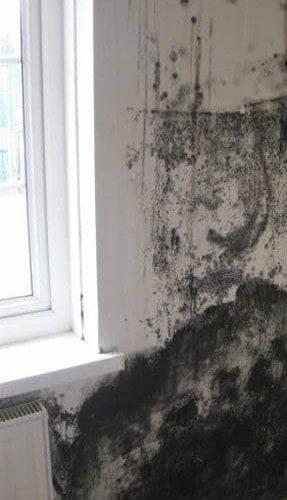Condensation problems in bedroom