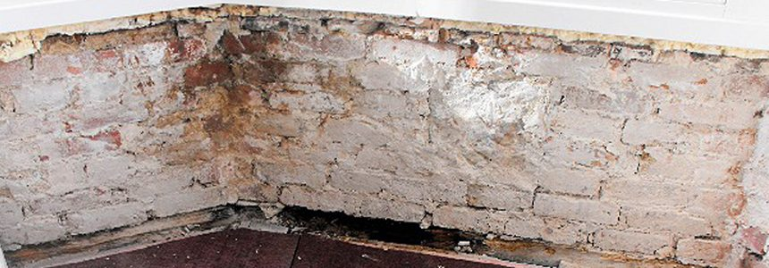 Damage of damp on wall