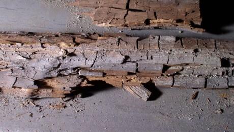 Damaged Timber