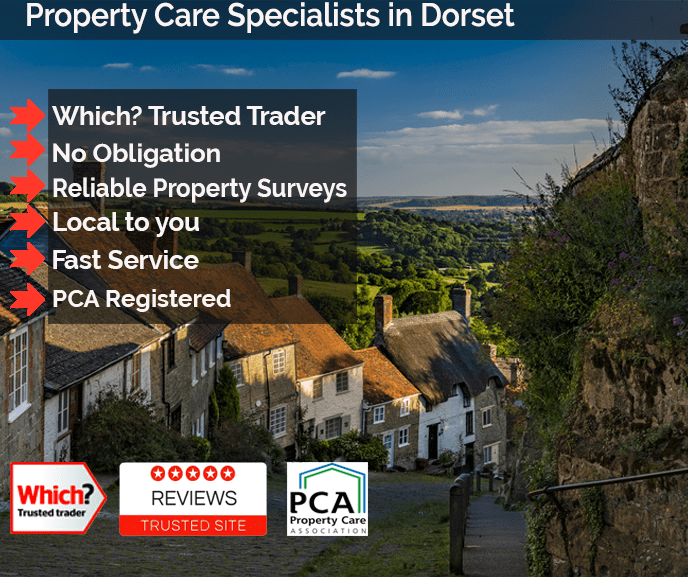 Properties in Dorset