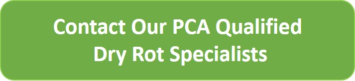 Dry Rot Specialist CTA