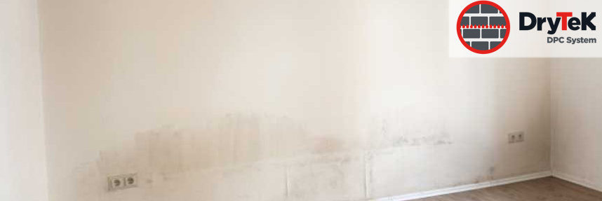 DryTek Rising Damp Solutions