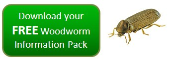 FREE Woodworm Help & Advice Pack