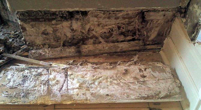 The differences between wet rot dry rot timberwise for How to dry wet wood floor