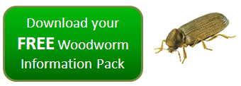 Free woodworm Information pack
