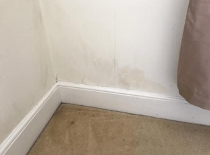 Dampness on an internal wall