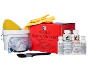Mould removal kit