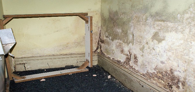 Rising damp on walls