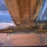 Wet rot decay