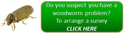 Woodworm problem? - arrange a woodworm survey!