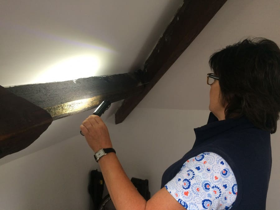 looking at woodworm with a torch on a wooden beam