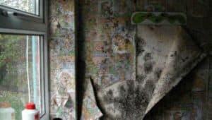 condensation causing peeling wallpaper