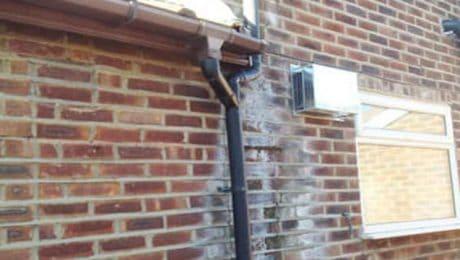 damp bricks at bottom of house